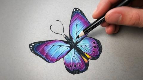 線上彩色鉛筆素描課程 – 初級到高級